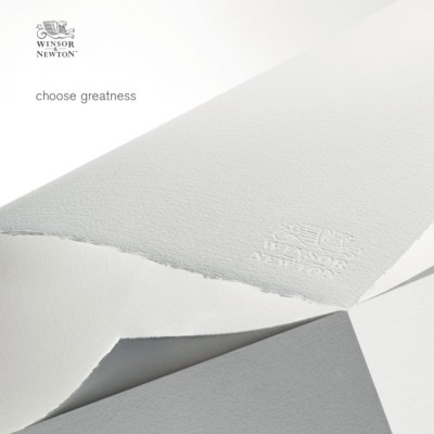 Fogli di Carta Professional W&N - 56x76 Grana Fine 100% Cotone