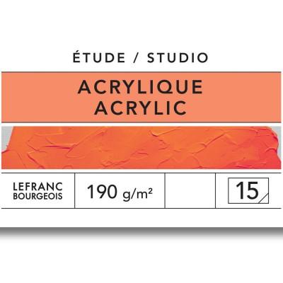 Blocco Studio Acrilico - Carta LeFranc Bourgeois