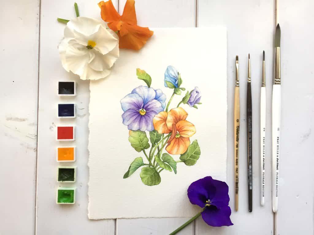 Come Creare Il Viola dipingere una viola con gli acquerelli - momarte