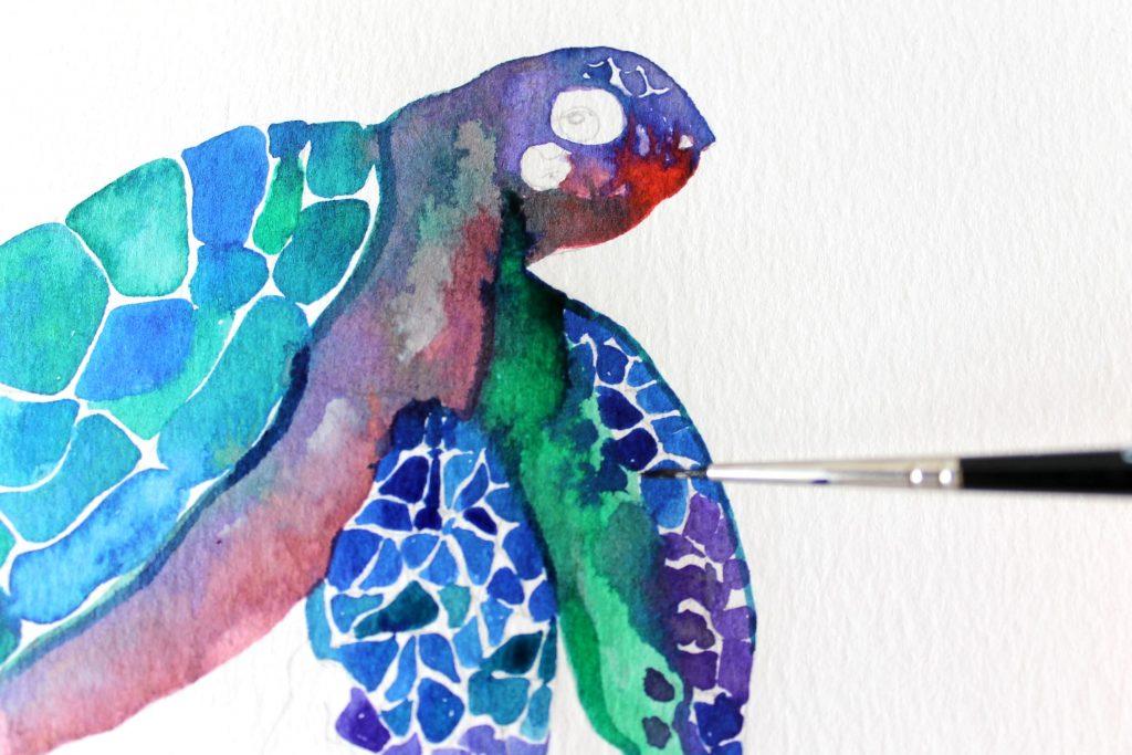 Tartaruga art Winsor & Newton