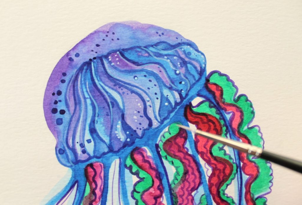 Medusa dettagli Winsor & Newton