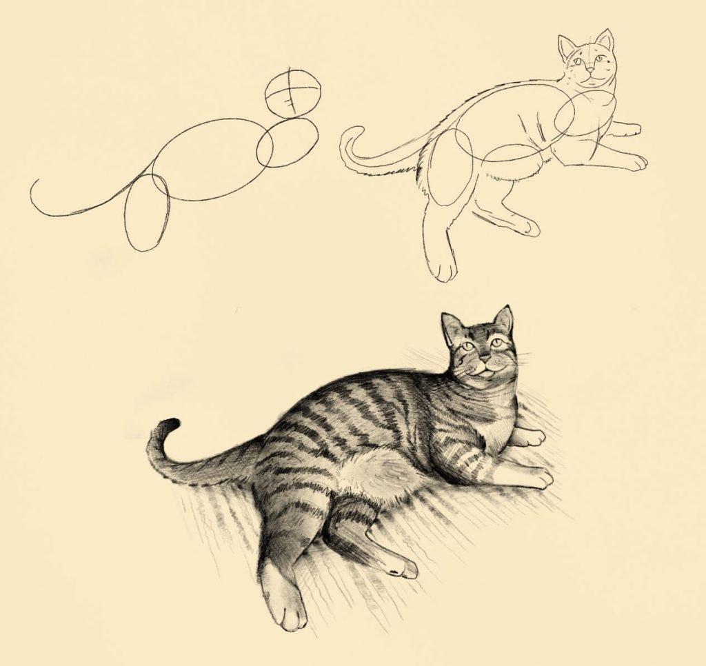 Disegno a matita di un gatto sdraiato