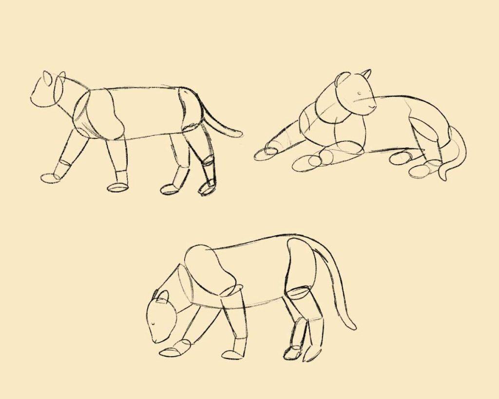 Bozze di gatti in varie posizioni